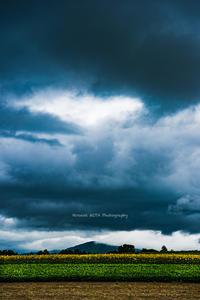 ニセコにて - 風景とマラソンと読書について語るときに僕の撮ること