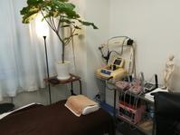 新緑の治療室 - 遠絡療法 ペレス・テラキ治療室 東京