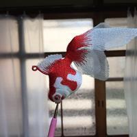金魚とがま口のお問い合わせについて - ソライロ刺繍