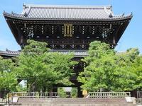 池玉瀾のお墓(江戸のヒロインのお墓⑬) - 気ままに江戸♪  散歩・味・読書の記録