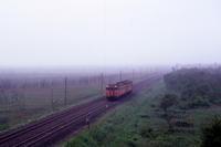 霧雨の原野 - 室蘭線・1985年 - - ねこの撮った汽車