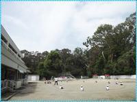 自由見学会 - ひのくま幼稚園のブログ
