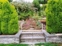 『ピーターラビット』が終わり、『秘密の花園』が始まる庭★ - コテージ便り