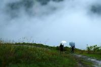 雨の高原 - PhotoWalker*