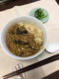 麻婆茄子丼 - 庶民のショボい食卓