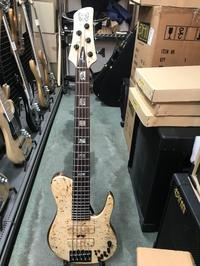 bass弾き - illume photo