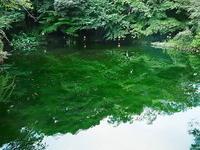 富士山本宮浅間大社湧玉池 - 風の香に誘われて 風景のふぉと缶