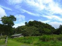 お米作りって大変です - 千葉県いすみ環境と文化のさとセンター