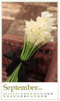 9月のカレンダー「カラーリリーとレジリエンス」 - Bloom&Grow通信「芦屋から 季節の色と香りに包まれた贅沢な毎日」