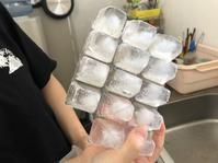 氷ネタ - BLOG  ホージャな人々(編集部編)