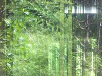 Reflection of window2 - はーとらんど写真感