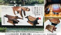 『ブラジル先住民の椅子 野生動物と想像力』at 東京都庭園美術館 / エイまで椅子と言い張るクリエイションの凄み! - maki+saegusa
