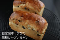 自家製ホップ酵母で、湯種レーズン食パン - 自家製天然酵母パン教室Espoir3n(エスポワールサンエヌ)料理教室 お菓子教室 さいたま