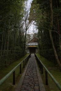 京都高桐院 - 京都ときどき沖縄ところにより気まぐれ