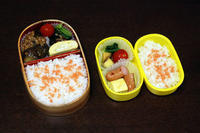 麻婆茄子 - 庶民のショボい弁当