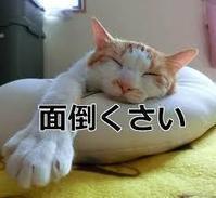 めんどくさい - 吉祥寺マジシャン『Mr.T』