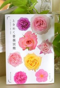 「ときめく薔薇図鑑」見本誌が届きました。 - 元木はるみのバラとハーブのある暮らし・Salon de Roses