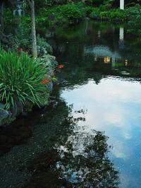富士山本宮浅間大社湧玉池Ⅱ - 風の香に誘われて 風景のふぉと缶