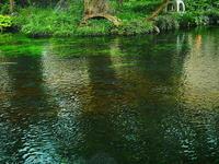 清い水の世界 - 風の香に誘われて 風景のふぉと缶