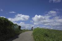 「堤防の道」 - hal@kyoto