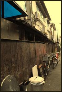 駒込界隈 -28 - Camellia-shige Gallery 2