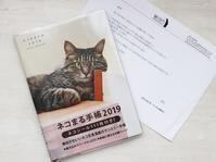 面白かわいい猫写真満載!ネコまる手帳2019 - きょうだい猫と仲良し暮らし
