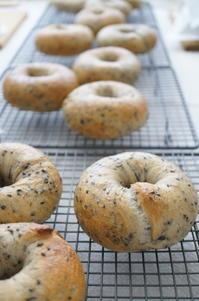 ベーグルレッスン始まりました! - launa パンとお菓子と日々のこと