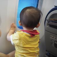 孫ちゃん 初飛行機ANA〜〜 - チェリーちゃんねる  第2章
