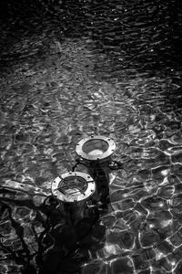 水面で遊ぶ光蜥蜴 - Silver Oblivion