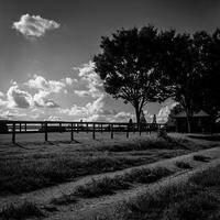 夏に別れを告げる牧場 - Silver Oblivion