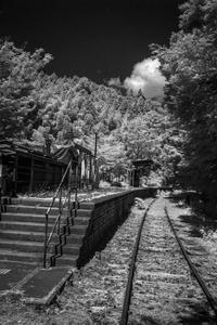 蝉しぐれの中に佇む廃駅 - Silver Oblivion