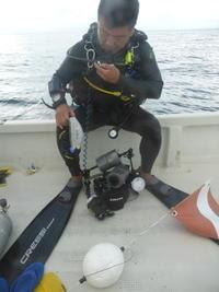 流れ流れて~♪~糸満近海ガイド付きボートダイビング(ファンダイビング)~ - 沖縄本島最南端・糸満の水中世界をご案内!「海の遊び処 なかゆくい」