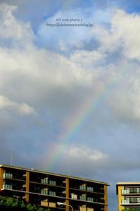 Rainbow -'18.08.21- - It's only photo 2