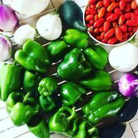 我が家の菜園日記n.26~まだまだ続くよ、夏の収穫&保存食作り - 幸せなシチリアの食卓、時々旅