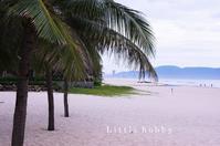 ベトナム旅行ダナンハイヤットビーチリゾート編2018 - Little hobby