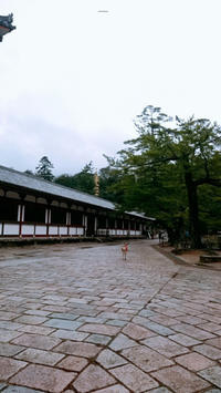 夏合宿ーチーフ局ー - 中央大学史蹟研究会公式ブログ