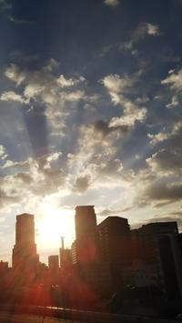 ●乙女座の新月は【浄化】のパワーを味方につけて♪ - 倫子のフラワーエッセンス・カウンセリング(大阪・スカイプ)
