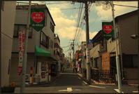 駒込界隈 -30 - Camellia-shige Gallery 2