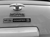 MORRIS COOPERS - 無題
