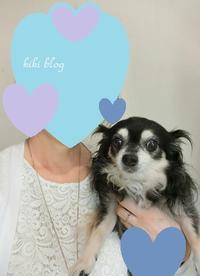 50代今日の服9/11 - KIKIブログ