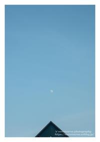 トライアングル - ♉ mototaurus photography