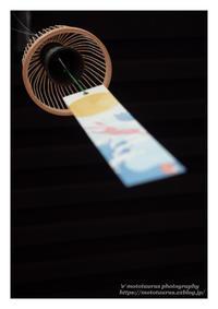 なごり夏 - ♉ mototaurus photography