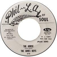 The James Boys ‎– The Horse / The Mule - まわるよレコード ACE WAX COLLECTORS