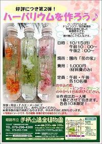 『ハーバリウム講習会』第二回目開催決定!!ヽ(^o^)丿 - 手柄山温室植物園ブログ 『山の上から花だより』