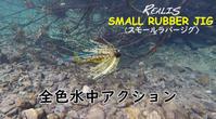 華麗なルアー水中映像 - 相羽純一の改過自新