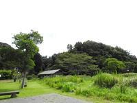 秋の風景 - 千葉県いすみ環境と文化のさとセンター