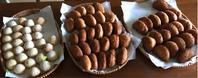 8月終わりから9月前半パン教室の様子 - 横浜パン教室tocotoco〜ワンランク上のパン作り〜