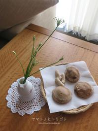 ニラの花 - yamatoのひとりごと