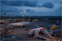 Airport@HANEDA - muku3のフォトスケッチ