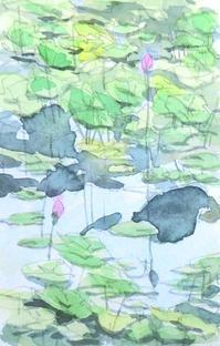 蓮の蕾 - ryuuの手習い